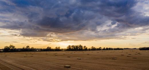 Президент України підписав закон, який знижує ставку ПДВ для деяких видів агропродукції