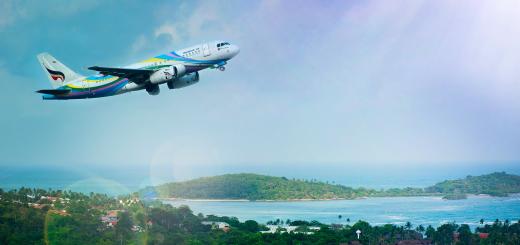 Франція може заборонити внутрішні авіарейси на короткі відстані заради клімату