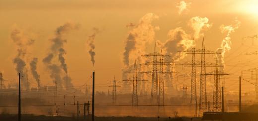 У Франції суд оштрафував владу на €10 млн через забруднення повітря