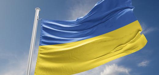За останні десять років в Україні винесли 36 вироків за наругу над національним прапором